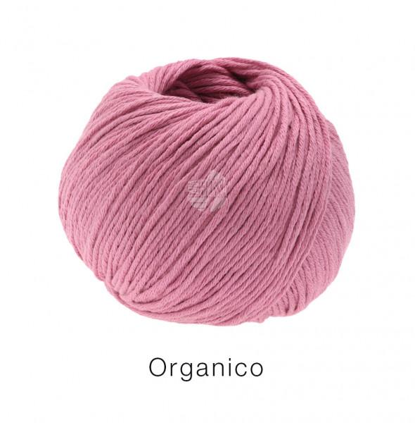 Lana Grossa Organico 127 Erika 50g