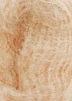 Lang Yarns Lace - Apricot