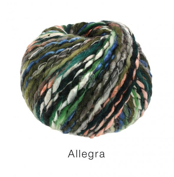 Lana Grossa Allegra 001 Grau/Rosa/Blau/Grün/Weiß 100g